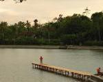 Menikmati Sore Di Telaga Ngambal Jawa Timur